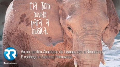 Zoo_elefanta Primavera